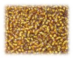 11/0 Golden Brown Inside-Color Glass Seed Beads - 1 oz. Bag