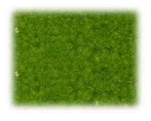 11/0 Bright Green Frosted Glass Seed Beads - 1 oz. Bag
